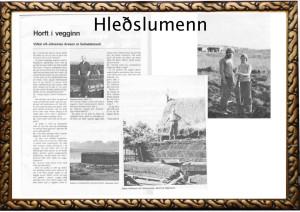 Hleðslumenn copy