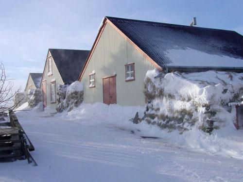 Austur Meðalholt 2004
